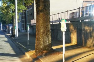 Parking space on Pine Street, Chattanooga, TN